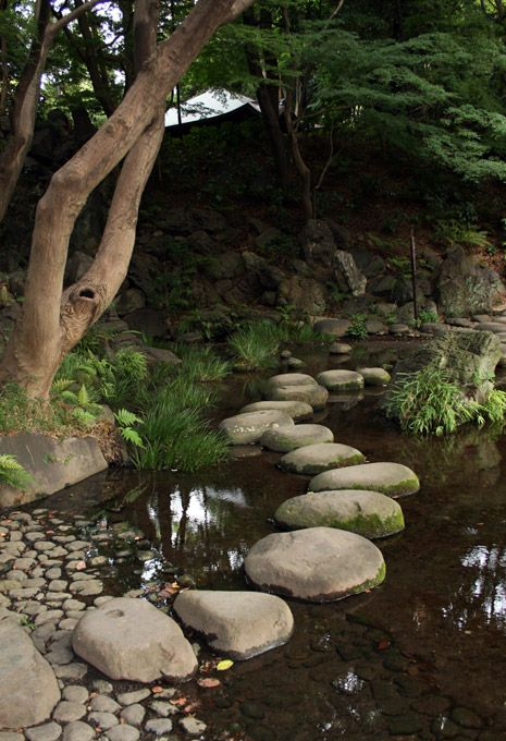 [Koishikawa Kourakuen 小石川後楽園 (Tokyo)]sawatobi 沢飛::Lit. marsh crossing. A path made of stepping stones (*tobi-ishi 飛石) placed in a shallow garden pond or stream. The stones (called sawatobi-ishi 沢飛石) serve to extend a path across the watercourse, often leading to a central island (nakajima 中島). ...