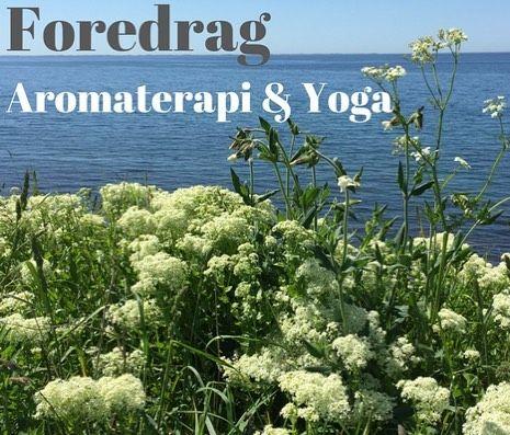 2 FOREDRAG: Nu kan du købe billetter til en dejlig lørdag i selskab med skønne dufte og lækre wellness teknikker Aromaterapi m/Ole Kalyana og Yoga m.m m/Anne Goncalves  Ses vi?  Link i profil #webshop #mellowwayblog #foredrag #yoga #meditation #ayurveda #aromaterapi #æteriskeolier #sesvi @anne.goncalves.yoga @primavera_life