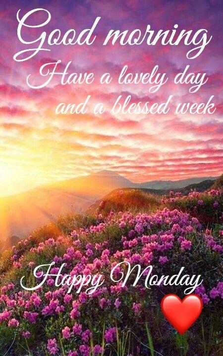 Happy Monday! Happy Week!