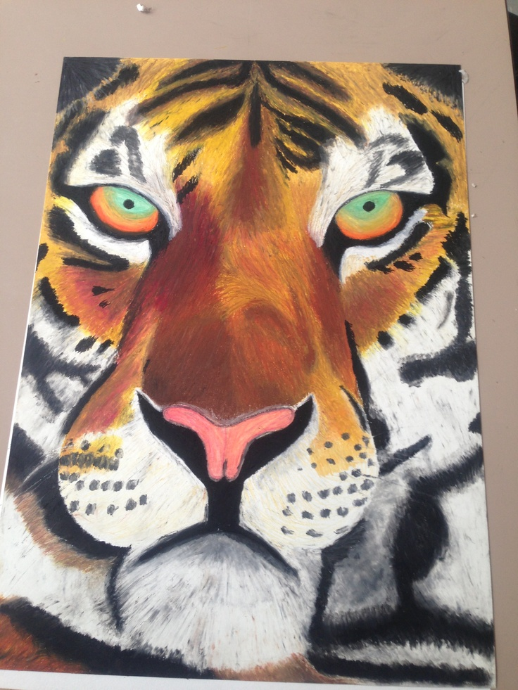 Full view. Oil pastel tiger