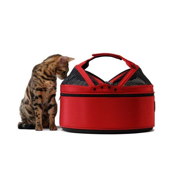Sleepypod Medium Mobile Pet Bed, Red, Pet Carrier – PetsOwnUs