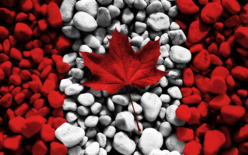 Flag of Canada - Happy Canada Day