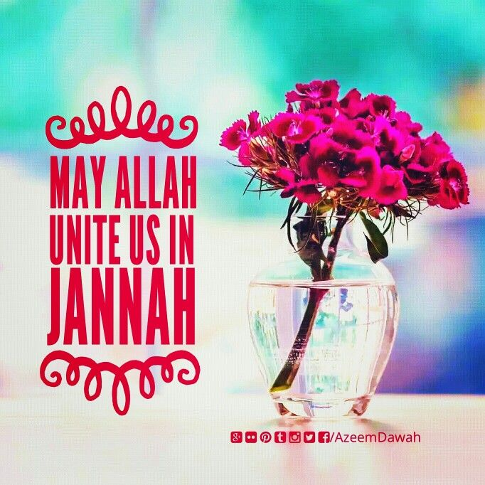 May Allah Unite us in Jannah Aameen