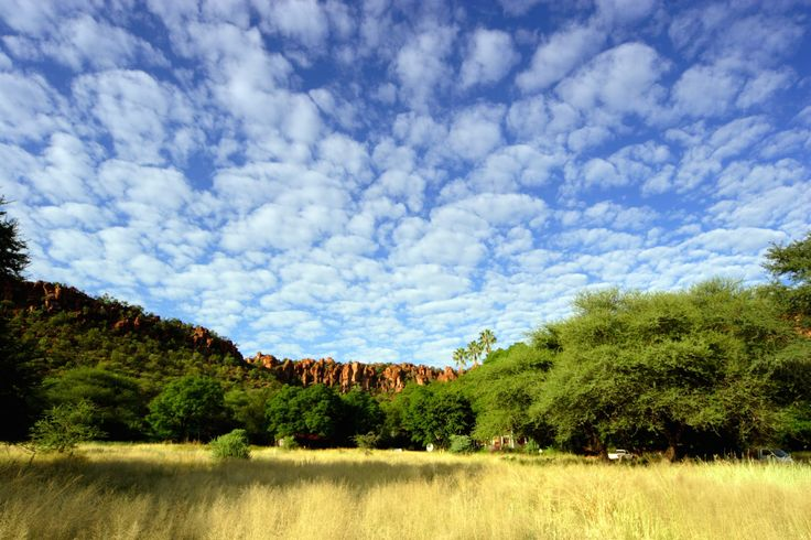 An upper layer of porous red sandstone absorbs rainwater like a sponge, and a base of impermeable rock means that springs flow year round. This makes the Waterberg Plateau a lush oasis, attracting prolific wildlife from afar. If this sounds like your kind of destination, find out the top reasons to visit, and see a collection of CAT's Crafted Holidays featuring the Waterberg >> #Namibia