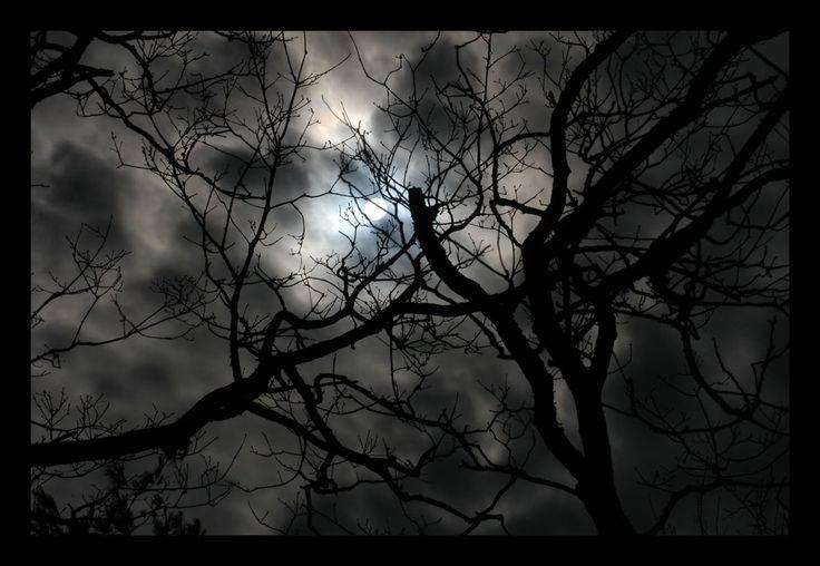 Spooky by iammenotu.deviantart.com on @deviantART