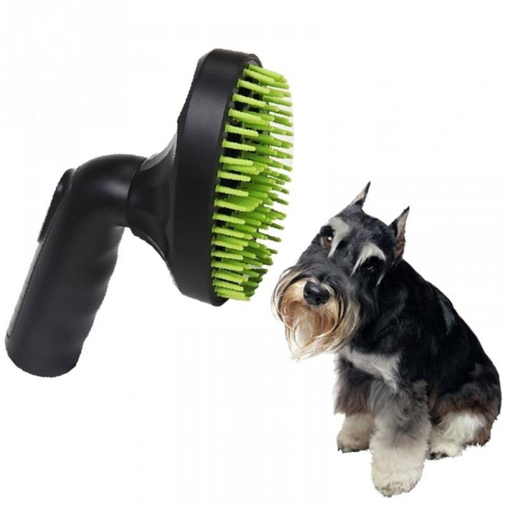 Dog Grooming Salon Decor Dog grooming salons, Grooming