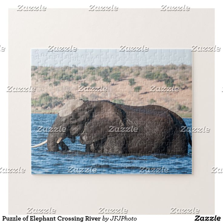 Puzzle of Elephant Crossing River