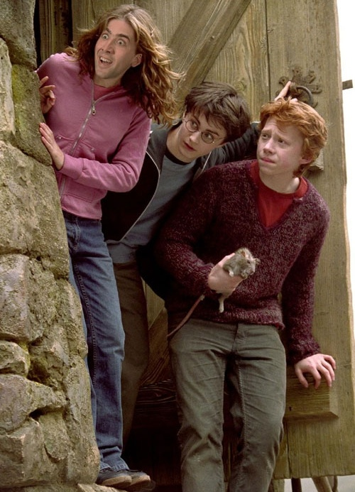 Don't know why this is so funny, but it is...Nicolas Cage as Emma Watson as Hermione Granger