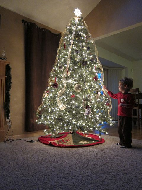 Christmas tree photography tips