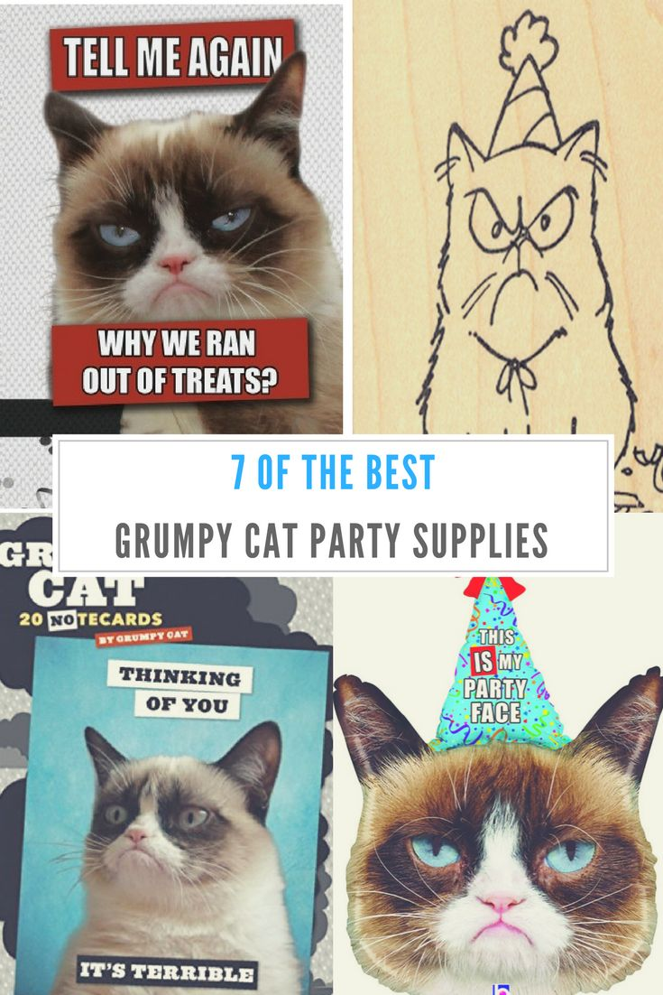 Throwing a Grumpy Cat Party?  Check out these grumpy AF party supplies and decorations.