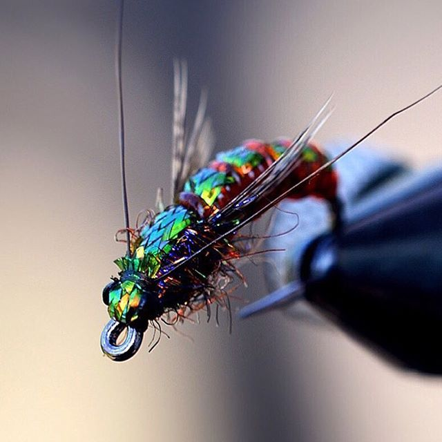 22 best fliegenbinden images on pinterest fishing for Fly fishing techniques