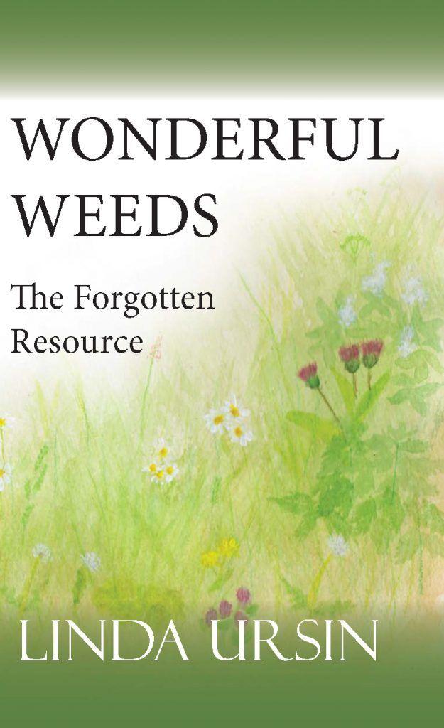 Wonderful Weeds - The Forgotten Resource by Linda Ursin