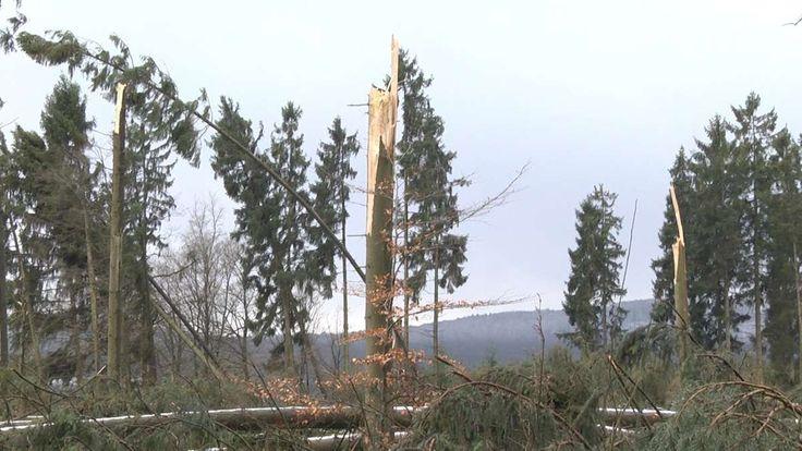Oberaula.Ein Waldstück zwischen Oberaula und Hausen im Schwalm-Eder-Kreis wurde von Friederike völlig flach gelegt. Insgesamt, so schätzte ein Waldbesitzer, kam es in Kirchheim und Oberaula zu einem Windbruch von etwa 100 Hektar Wald.