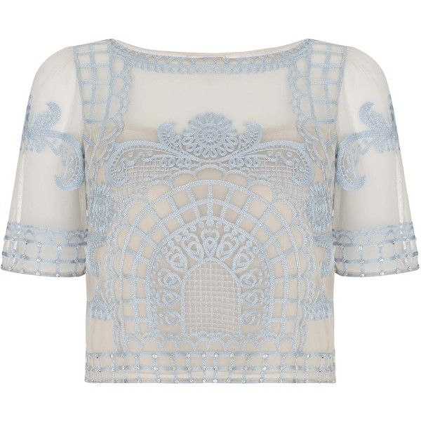 Temperley London Delphia Crop Top ($1,420) ❤ liked on Polyvore featuring tops, shirts, crop tops, blue mix, embroidered shirts, short sleeve crop top, sheer crop top, indian shirt and blue top