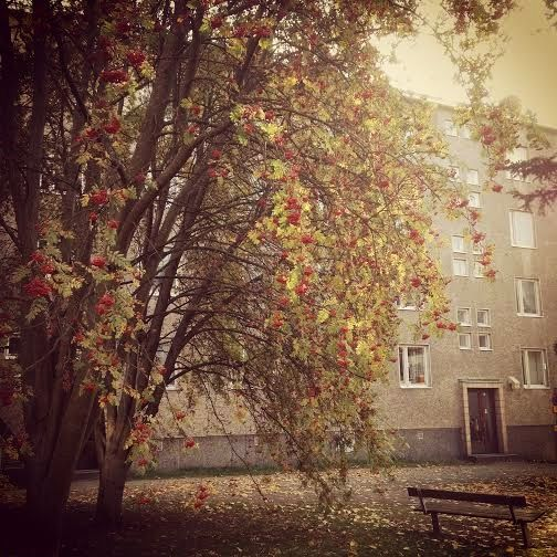 Fall in the city of Tampere, Finland.