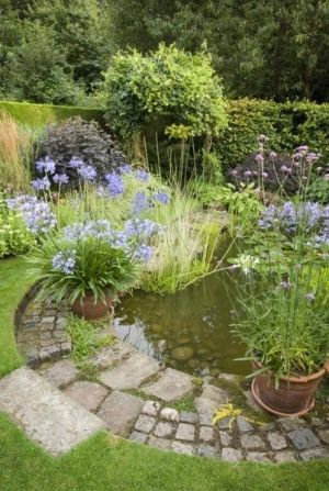 Pond surrounded by Pavers and tall blooming flowers in large terra cotta pots as well as planted in pond. by jezzie