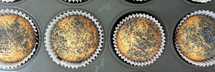 muffins integrales de limon & amapola 3