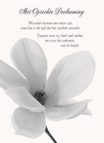 Kaarten - condoleance - algemeen d | Hallmark