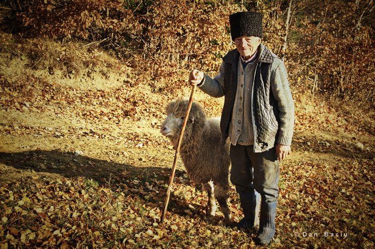 Romanian Shepherd - Romania Transylvania picture - portrait - photography