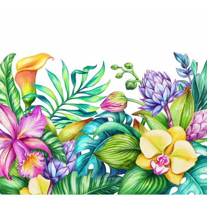 Mchugh Removable Paradise Nature Tropical Flowers Frame Orchid Hibiscus Wall Mural In 2021 Flower Mural Tropical Flowers Flower Frame