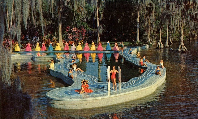 The Esther Williams Swimming Pool Was Built In The Shape Of The Map Of Florida Projecting Out