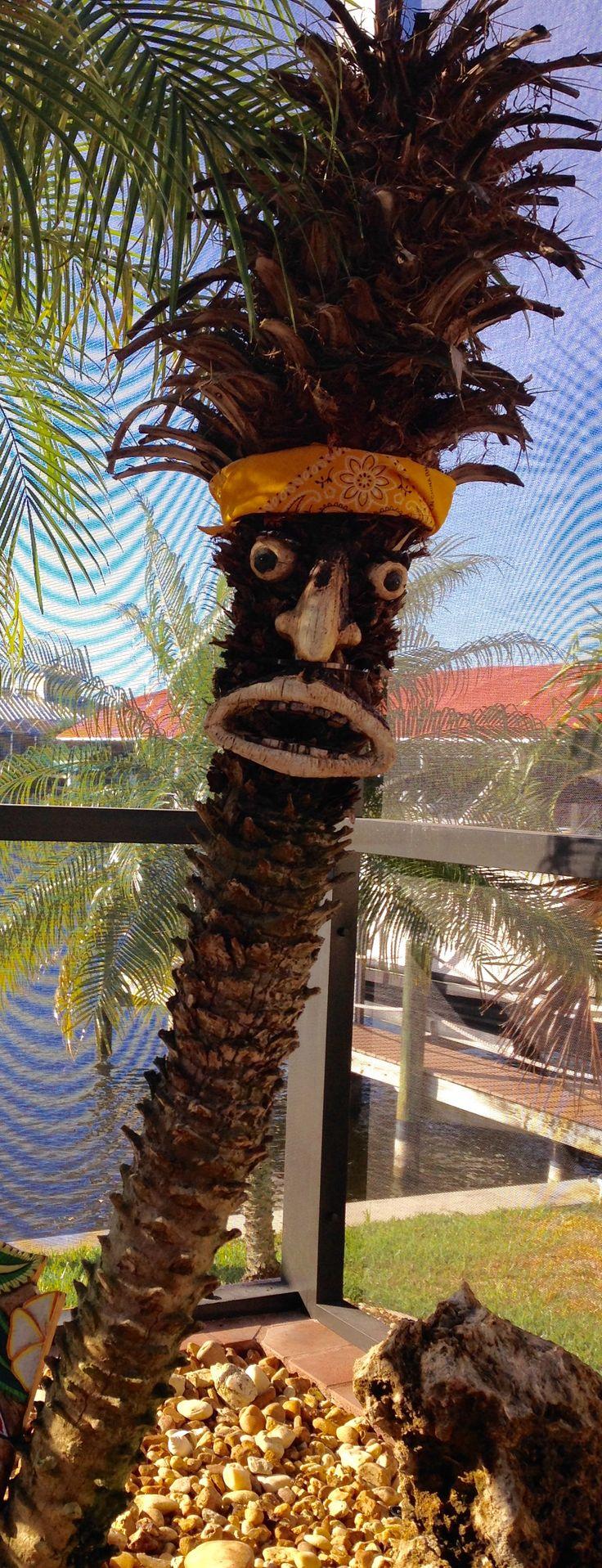 best 25 palm tree removal ideas on pinterest palm tree