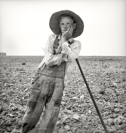 July 1936. Hoe culture in the South. Poor white, North Carolina. Photo by Dorothea Lange for the Resettlement Administration.