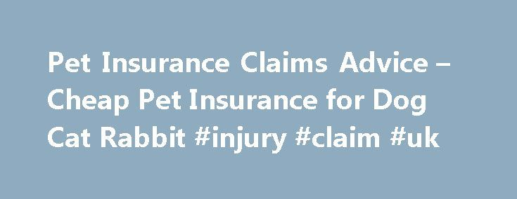 Pet Insurance Claims Advice – Cheap Pet Insurance for Dog Cat Rabbit #injury #claim #uk http://claim.remmont.com/pet-insurance-claims-advice-cheap-pet-insurance-for-dog-cat-rabbit-injury-claim-uk/  insurance claims advice Pet Insurance Claims Advice Making A Claim When you re […]