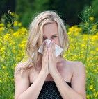 prévention et traitement allergies saisonnières
