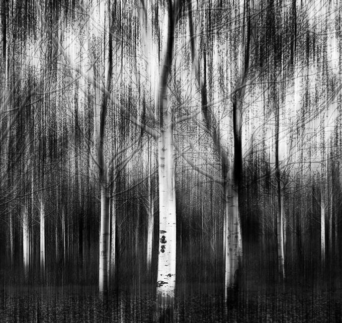 Ansel Adams Photography | ... Fadi Tarawneh > Photos > Abstract > An abstract photo tribute to