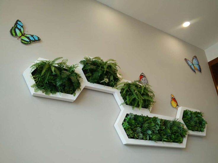 Just a few hexagonal shape living walls can create stylish pattern on the wall.