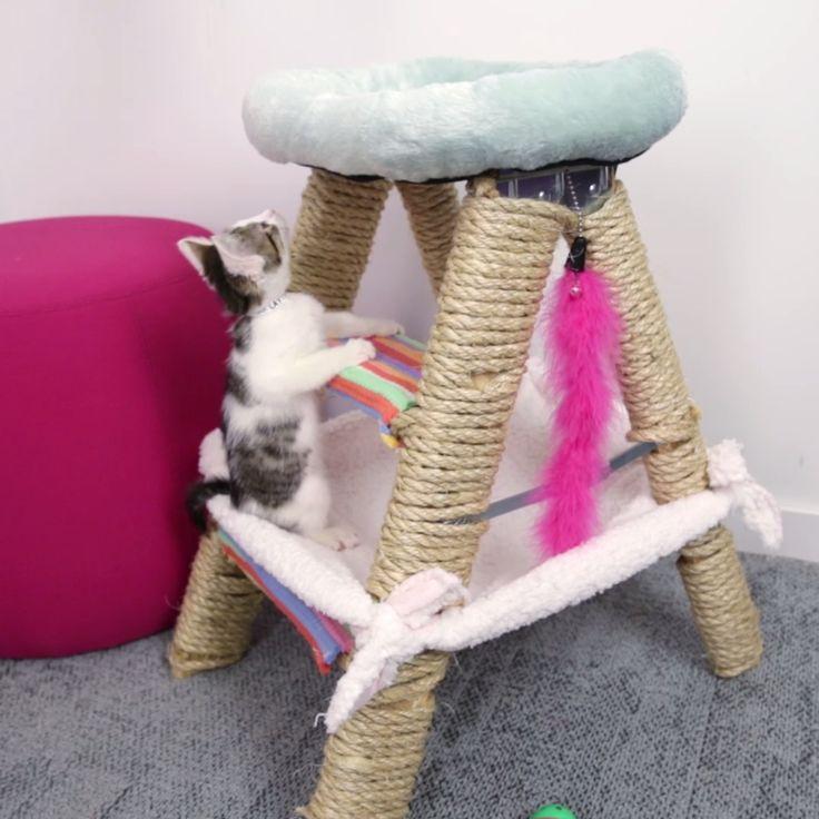 DIY Cat Ladder Fort