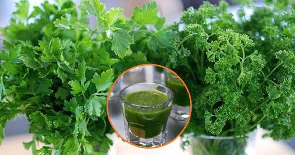 Cilantro and parsley are known for their incredible heavy metal chelating effects. Combined together, they have the ability to eliminate the poisoning of heavy metals such as nickel, uranium, lead, cadmium, arsenic, aluminium, and mercury. For that purpose, we have a juice prepared of cilantro and parsley that you are supposed to consume it for …