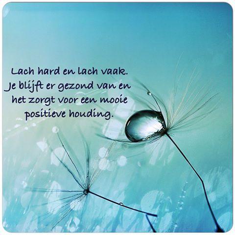 Lach hard en lach vaak. Je blijft er gezond van en het zorgt voor een mooie positieve houding #lachen # positief #positive #laugh