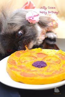 无麸质南瓜狗狗蛋糕 Gluten Free Pumpkin Doggy Cake