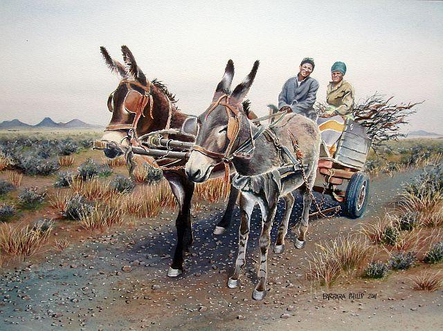 Hofmeyr Road donkey cart