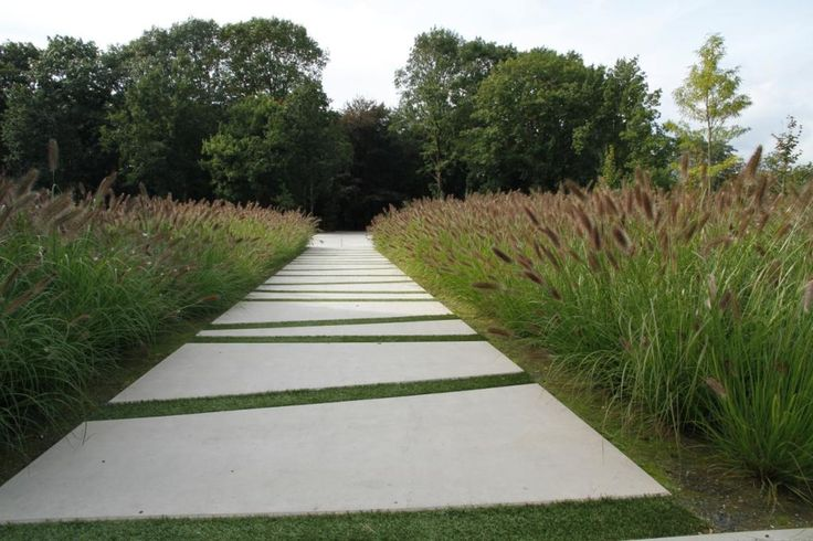 Moderne tuin | Strak | Siergras | Bestrating | Lijnenspel