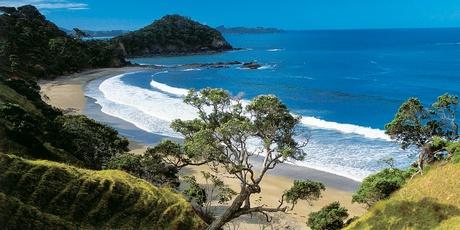 Sandy Bay, Tutukaka, NZ
