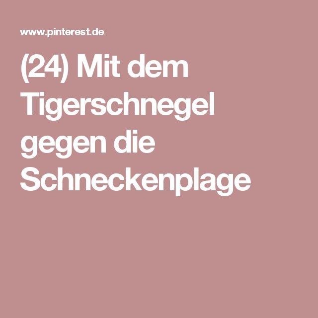 (24) Mit dem Tigerschnegel gegen die Schneckenplage