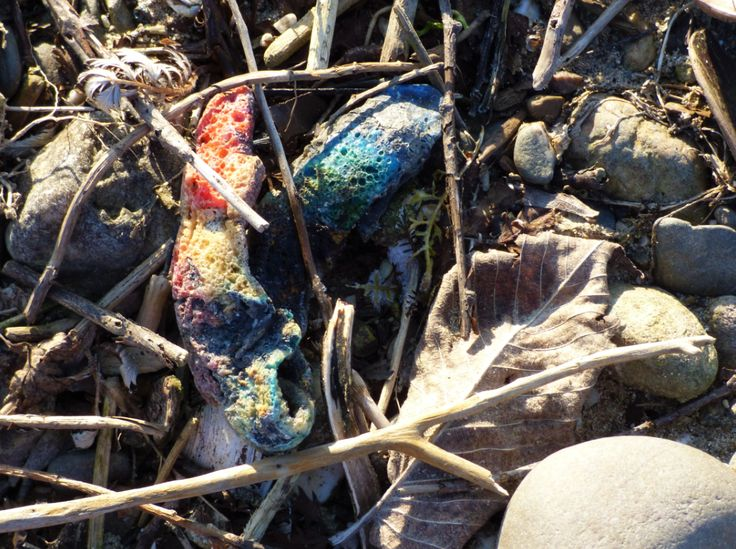 bunte Plastik, angeschwemmt am Rhein, Worringen, Foto: S. Hopp