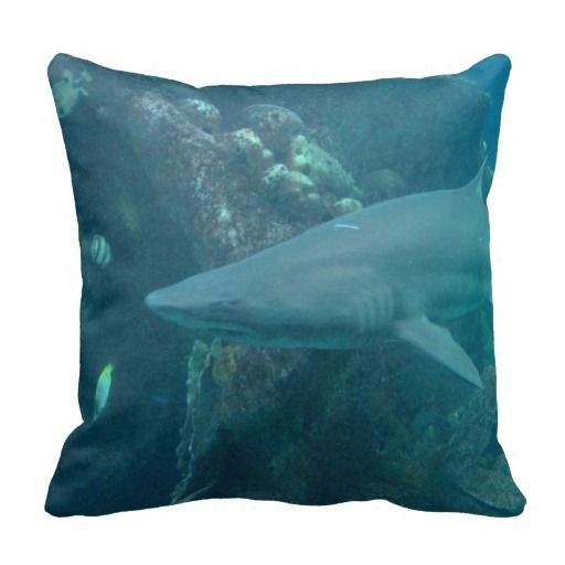 Shark Throw Pillows ..............This picture is of a shark, taken in Boston,MA. in July 2011. Shark lifespans vary by species. Most live 20 to 30 years.   Check out this design on other products in my store.