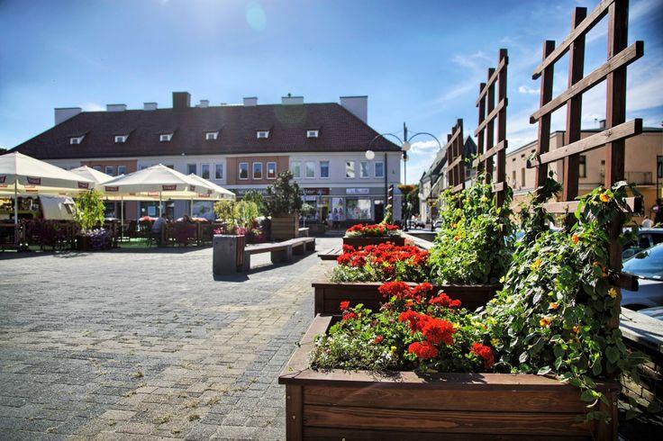 Terra Flower Power | Wieluń