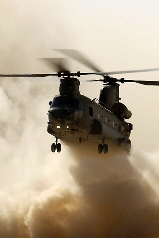 Army helicopter. I fixed them, I transported grunts and supplies, i shot out of them, this was my job