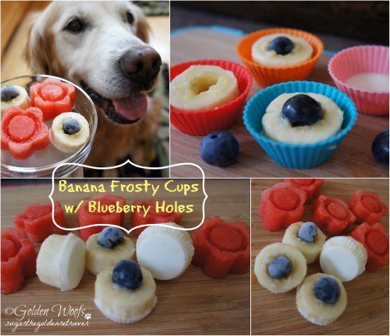 5 Dog Recipes For Homemade Summer Treats: Chicken pops, Frozen banana treats, PB&J pops, Frozen yogurt dipped strawberries, and Cheeseburger pops!