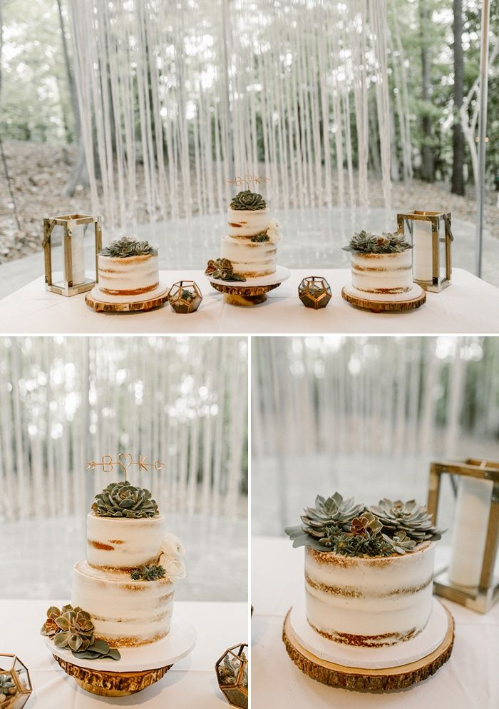 Partially naked cakes, succulent accents, geometric shapes | Image by Vic Bonvicini Photography