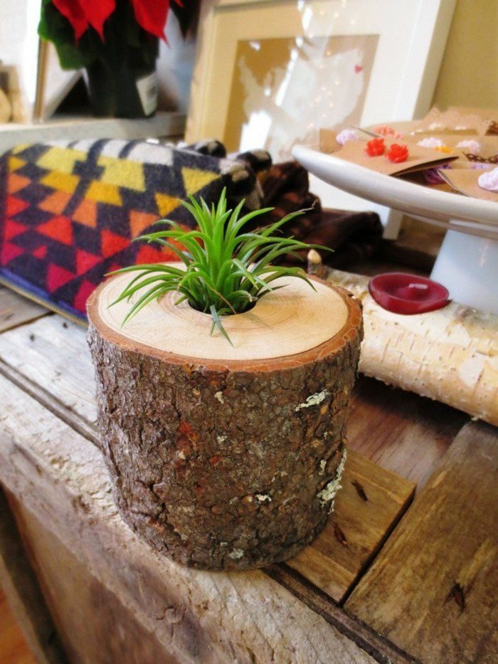 wohnideen zum selber machen pflanzenbehälter basteln baumstumpf verwenden