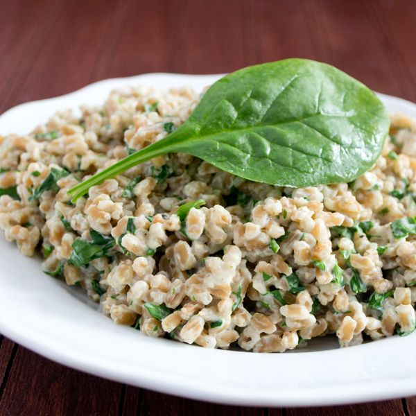 Simple Farro Recipe with Cream Cheese and Spinach