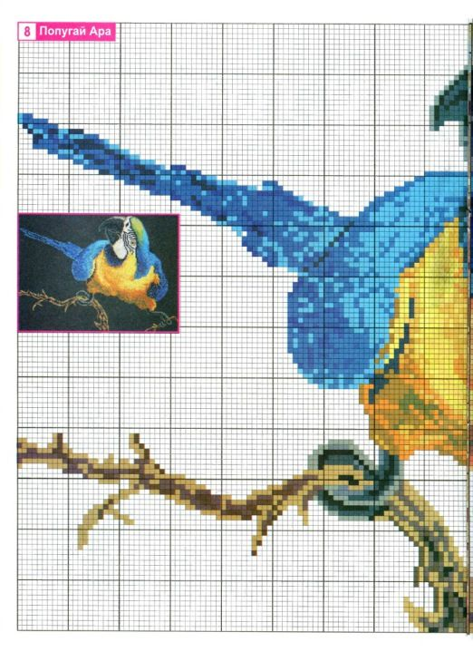 Borduurpatroon Kruissteek Papegaai - Parkiet *Embroidery Cross Stitch Pattern Parrot ~Ara blauw-geel 1/2~