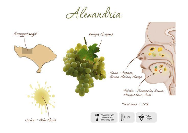 Alexandria visual presentation
