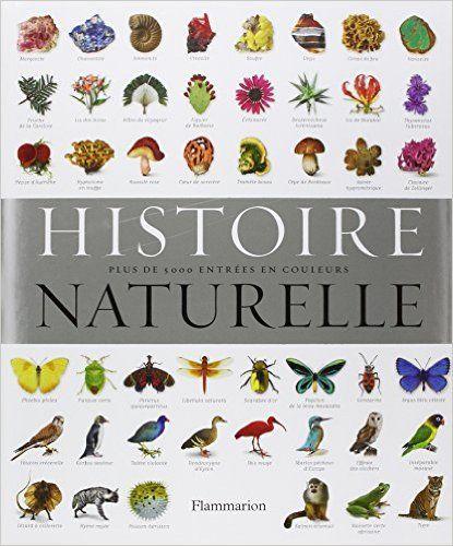 Amazon.fr - Histoire naturelle - Flammarion, Michel Beauvais, Marcel Guedj, Salem Issad - Livres
